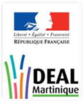 logo-deal-martinique